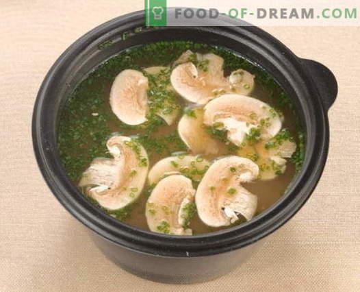 Bouillon de champignons - les meilleures recettes. Comment cuire correctement et savoureux bouillon de champignons.