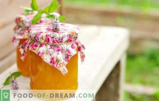 Recettes confiture de citrouille rapidement - le goût de l'automne. La confiture de citrouille est rapide et savoureuse: à l'orange, au citron, aux abricots secs, aux pommes, etc.