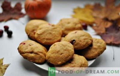 De simples biscuits savoureux au kéfir - la tradition de la cuisson à la maison. Recettes de biscuits simples sur kéfir: flocons d'avoine, à la cannelle, au chocolat, aux noix, aux graines de pavot, etc.