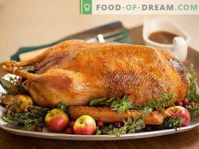 Oie cuite au four - les meilleures recettes. Comment cuire correctement et savoureux oie au four.