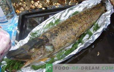 Le brochet au four en papillote est un plat royal. Comment faire cuire le brochet au four avec du papier d'aluminium: à la crème sure, aux champignons, aux légumes