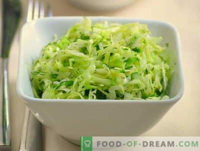 Salades de chou et concombre - cinq meilleures recettes. Comment cuire correctement et savourer des salades avec du chou et des concombres.