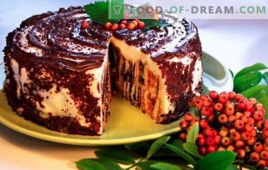 Cake Dumpling Stump: recettes étape par étape. Comment faire cuire un délicieux gâteau