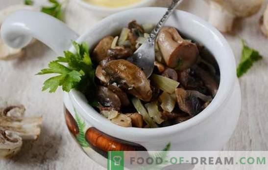 Champignons frits avec oignons: la bonne technologie de cuisson. Photo-recette pas à pas pour la cuisson des champignons avec des oignons