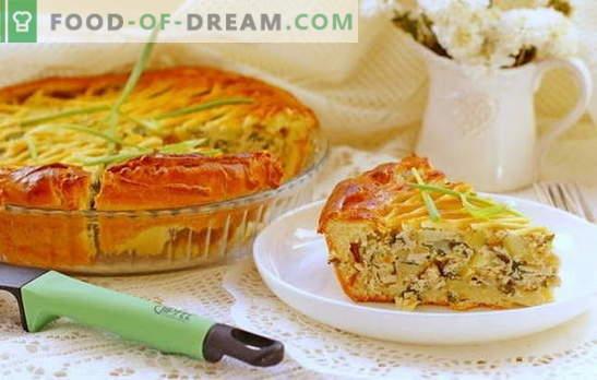 Ciasto z mielonym mięsem i ziemniakami w piekarniku - satysfakcjonujące! Przepisy na ciasto z mielonym mięsem i ziemniakami w piekarniku drożdży i ciasta bez drożdży