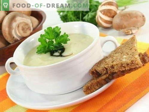 Soupe aux champignons - les meilleures recettes. Comment bien et savoureux cuire la soupe aux champignons.