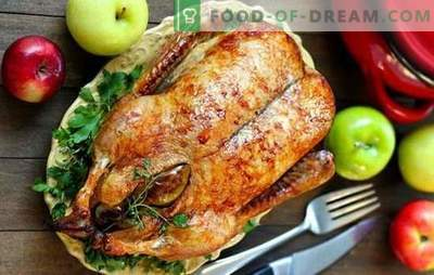 Oie de Noël: Les 5 meilleures recettes