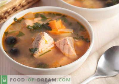 Potages Hunchback - recettes éprouvées. Comment bien et savoureux cuire la soupe de saumon rose.