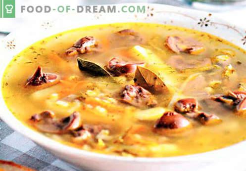Pickle aux rognons - les meilleures recettes. Comment bien et savoureux cuire le cornichon avec le rein