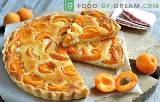 Tarte simple aux abricots - n'importe qui peut s'en occuper! La cuisson des tartes aux abricots d'été: des recettes simples pour tous