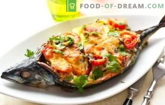 Que faire cuire rapidement et savoureux pour le dîner? Recettes de poisson, poulet, fromage cottage et légumes rapides et savoureux pour le dîner en famille