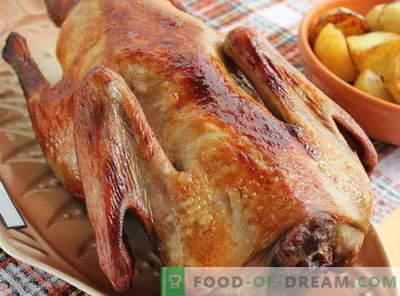Canard cuit au four - les meilleures recettes. Comment faire cuire le canard correctement dans le four.