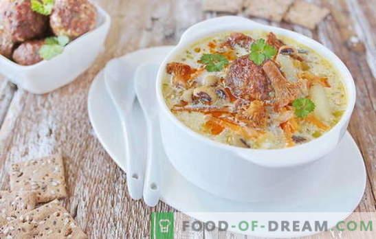 Soupe aux boulettes de viande - plaisir satisfaisant! Diverses recettes de soupes aux boulettes de viande et haricots, nouilles, champignons, légumes