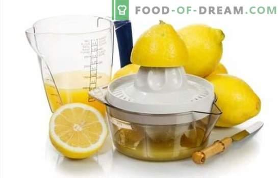 Faire du jus de citron - des recettes au goût divin! Jus de citron: recettes de boissons alcoolisées et non alcoolisées avec
