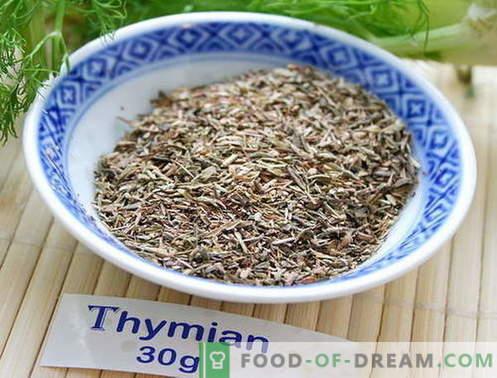 Thym - description, propriétés, utilisation en cuisine. Recettes de plats au thym.