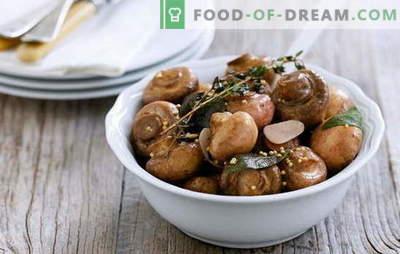 Variété de recettes et caractéristiques de cuisson de champignons marinés. Comment faire mariner les champignons