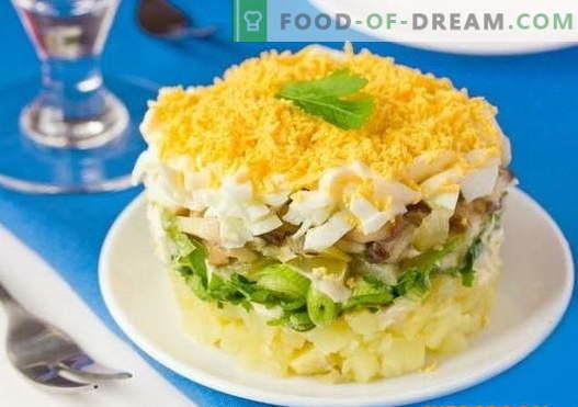Salade étagée aux champignons - une sélection des meilleures recettes. Comment cuire correctement et savoureux couche de salade avec des champignons.