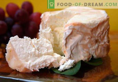 Ser domowy - najlepsze przepisy. Jak prawidłowo i smacznie gotować ser z twarogu lub mleka w domu.