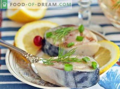 Maquereau mariné - les meilleures recettes. Comment faire mariner le maquereau à la maison.