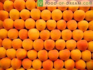Comment conserver les abricots