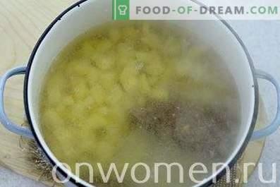 Soupe aux boulettes