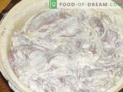 Marinade pour brochettes avec mayonnaise