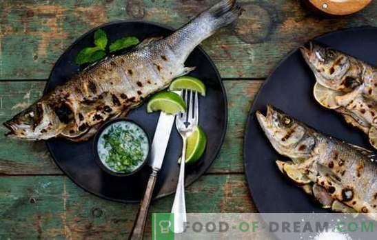 Comment gâcher du poisson grillé: erreurs majeures