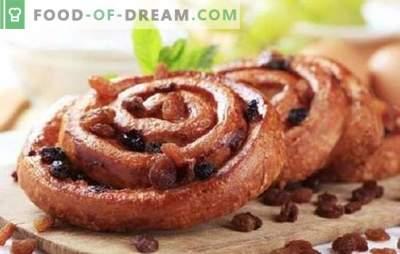 La cuisson aux raisins secs est un classique intemporel. Recettes de cuisson avec des raisins secs: biscuits, tartes, gâteaux au fromage, muffins et petits pains